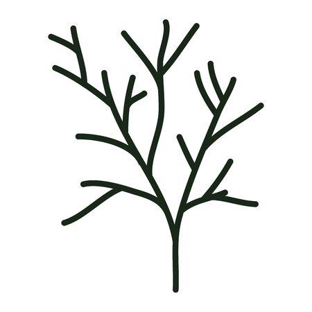 autumn branch of tree plant
