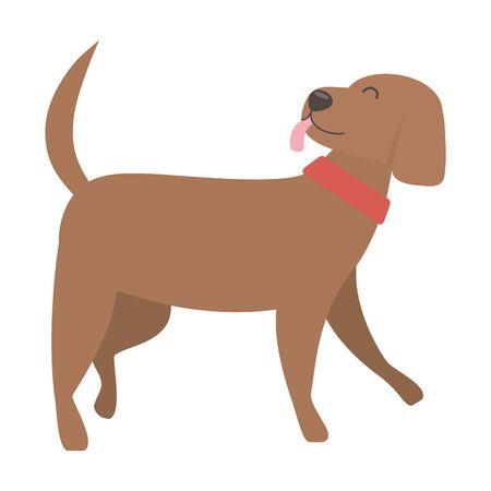 Dog cartoon design vector illustration