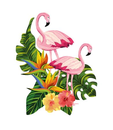 flamingos couple with tropical flowers and leaves vector illustration