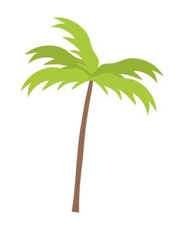 Palm tree of summer season design Ilustração