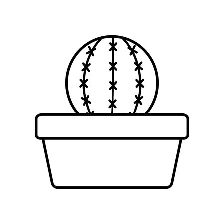 exotic cactus plant in square ceramic pot vector illustration design Illustration