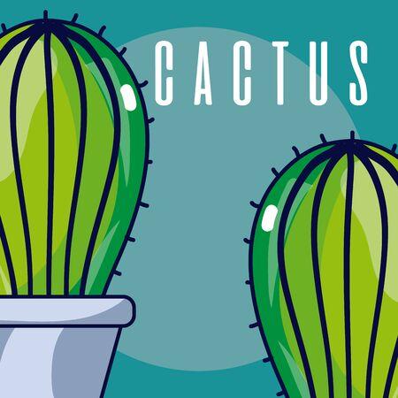 Cactus house plants Фото со стока - 129233067