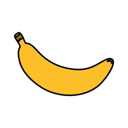 fresh banana fruit nature icon