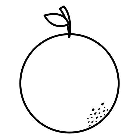 orange citrus fresh fruit icon