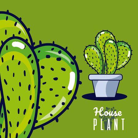 Cactus house plant Иллюстрация