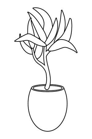 house plant cartoon