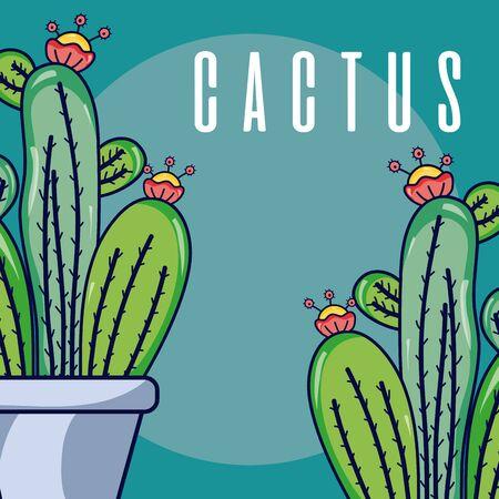 Cactus house plants Reklamní fotografie - 129377010