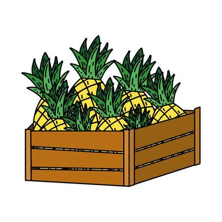 color delicious pineapples fruits inside wood basket Banque d'images - 129470654