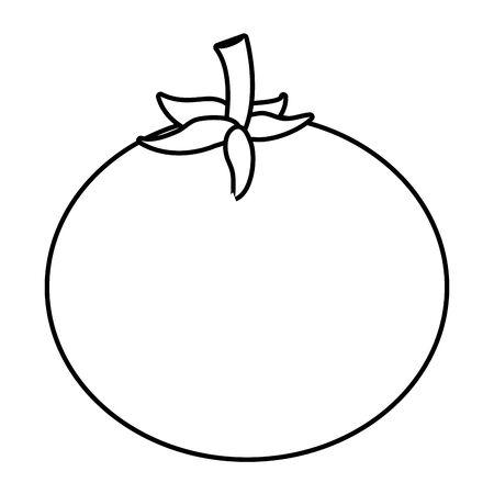 Isolated tomato design vector illustration