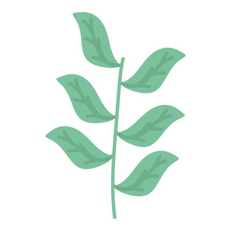 branch with leafs plants garden vector illustration design