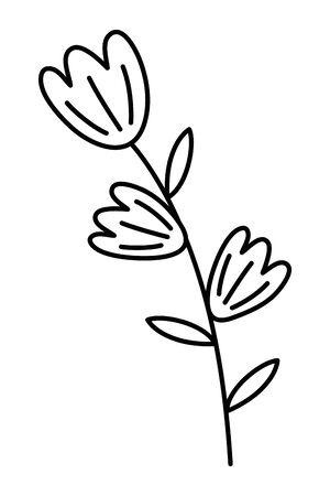 Isolated flowers ornament design vector illustration 向量圖像