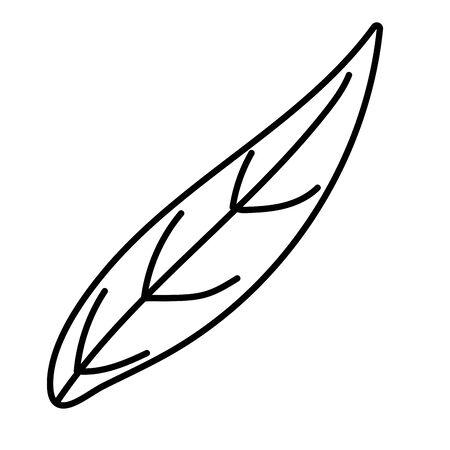 Isolated leaf design vector illustration