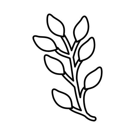 leafs plants garden nature icon vector illustration design 向量圖像
