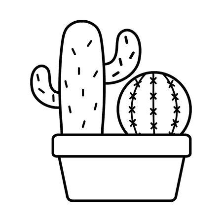 exotic cactus plants in square ceramic pot 版權商用圖片 - 132102446