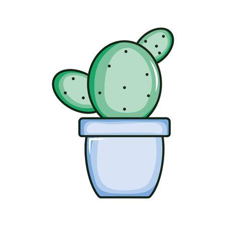 cactu plant exotic in ceramic pot