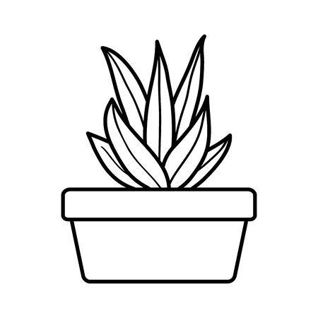 house plant in square ceramic pot vector illustration design 版權商用圖片 - 132102366