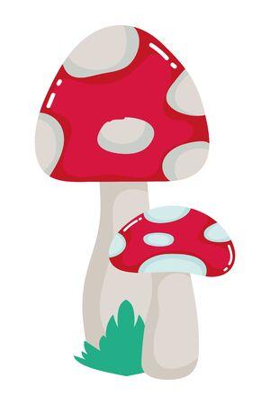 Isolated pointed fungi mushroom design
