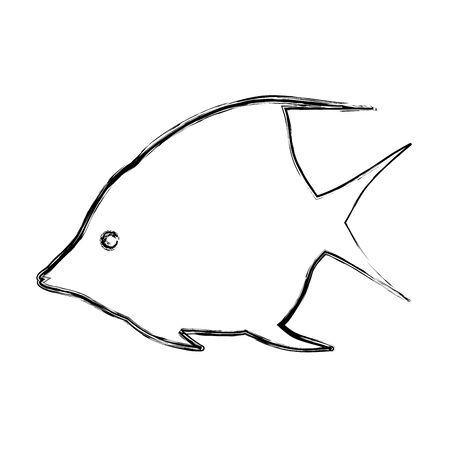 grunge tropical angel fish nature animal vector illustration