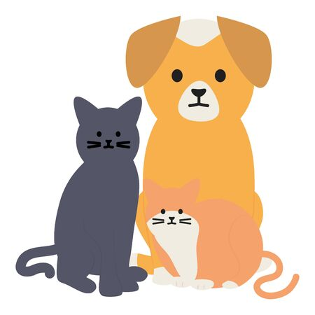 cute cats and dog mascots adorables characters vector illustration design