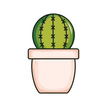 cactu plant exotic in ceramic pot vector illustration design