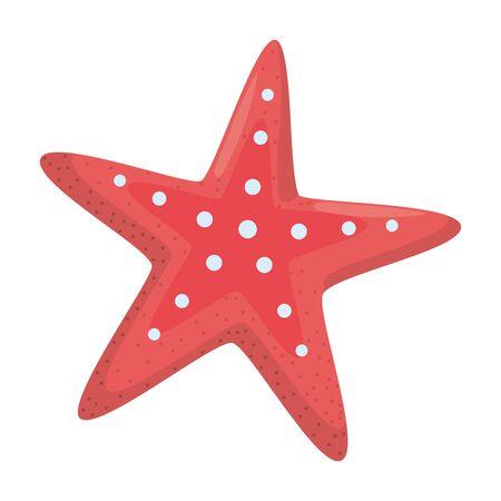 Isolated ocean sea star design