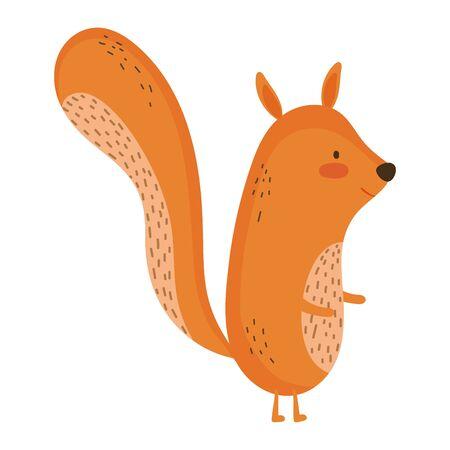 Isolated squirrel cartoon vector design