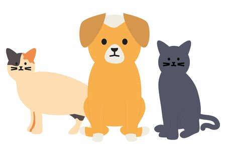 cute cats and dog mascots adorables characters