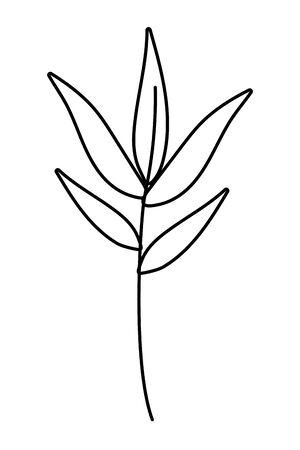 Leaves design, Plant floral garden nature decoration ornament and season theme Vector illustration Stok Fotoğraf - 130118096