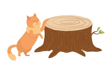 Cat cartoon design vector illustrator