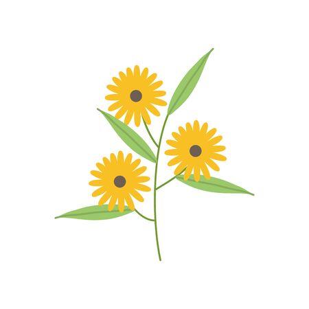 sunflowers garden plant decorative icon vector illustration design