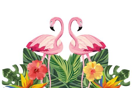 tropical flamingos with flowers cartoon vector illustration graphic design Фото со стока - 131266835