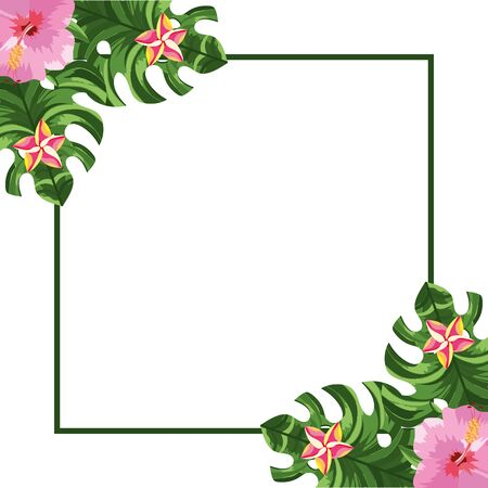 nature flowers square cartoon vector illustration graphic design