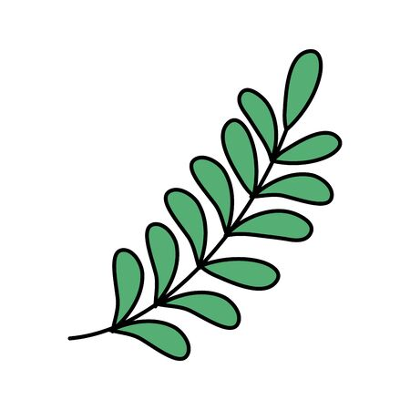 green branch leaves foliage icon on white background vector illustration Illusztráció