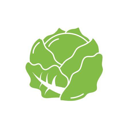 Isolated lettuce vegetable vector design