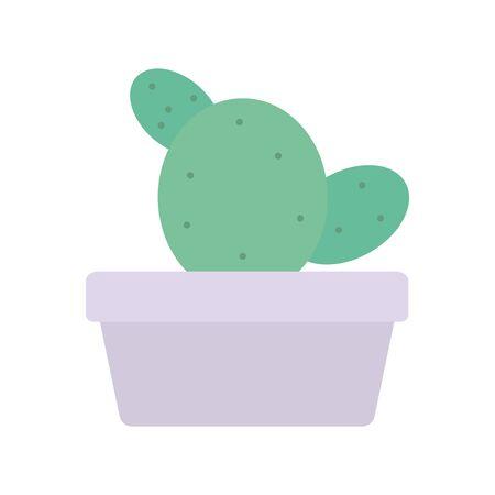 exotic cactu plant in square ceramic pot vector illustration design
