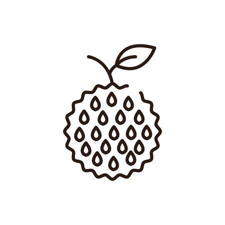 Isolated custard apple icon line vector design Illustration