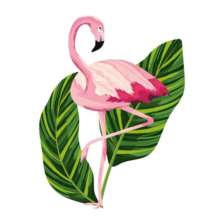 tropical flamingo cartoon Çizim