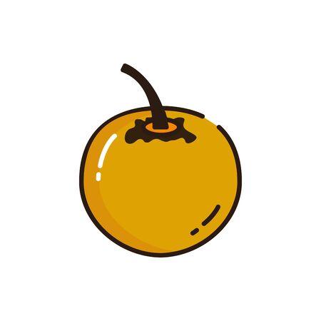 Isolated persimmon icon fill vector design
