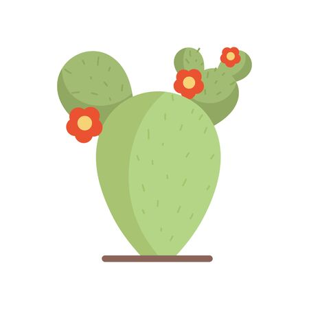 flowers cactus plant traditional mexico icon