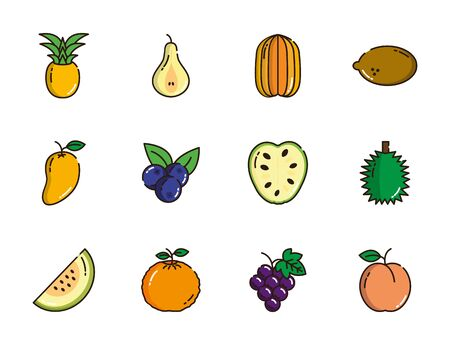 fresh nutrition harvest fruits icons set vector illustration