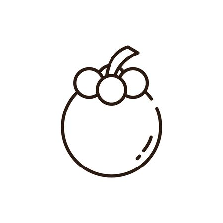 mangosteen icon design, Fruit healthy organic food sweet and nature theme Vector illustration Illustration