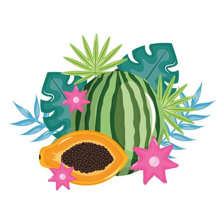 fresh watermelon and papaya with floral decoration vector illustration design Standard-Bild - 133061334