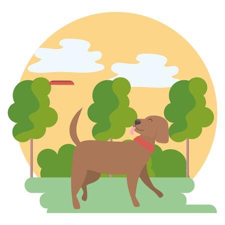 Dog cartoon design, Mascot pet animal nature cute and puppy theme Vector illustration