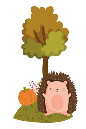Hedgehog cartoon design, Animal cute zoo life nature and fauna theme Vector illustration