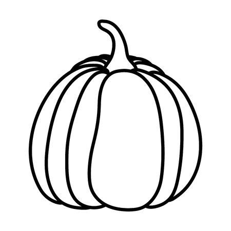 pumpkin vegetable fresh autumn on white background vector illustration thick line