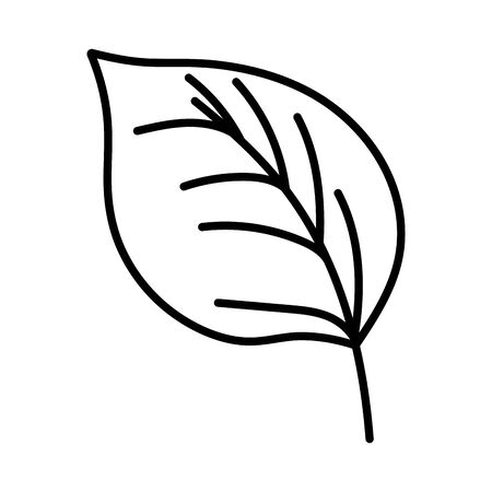 natural leaf foliage autumn on white background thick line Stock fotó - 133719461