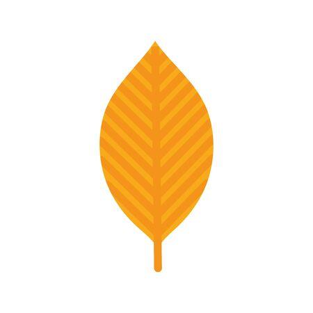 natural leaf foliage autumn on white background