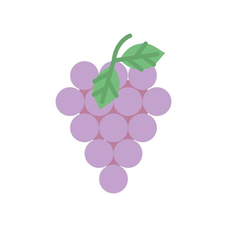 bunch grapes fresh fruit harvest design icon
