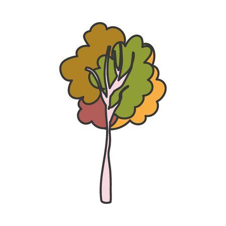 tree foliage botanical nature autumn Vector Illustratie