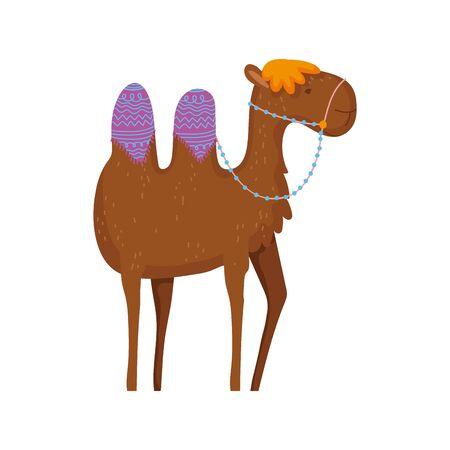 camel desert animal cartoon on white background